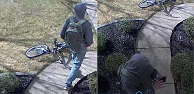 Mebane authorities searching for breaking and entering suspect