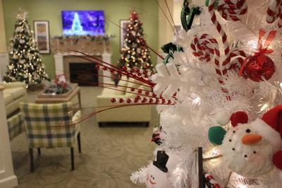 "Danbury ""Festival of Trees"" Event Supports Brunswick Optimists"