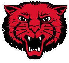Mena Bearcat