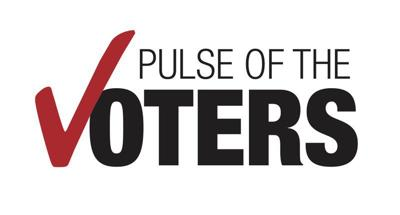 Pulse of the Voter: Take a survey, voice your opinion