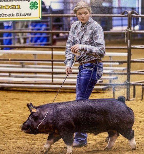 Lauderdale County Jr. Livestock Show and Sale a success