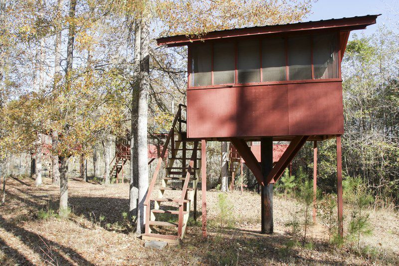 Meridian's Camp Meridale offers renovated treehouses
