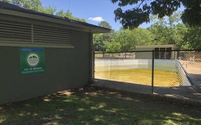 Meridian considers closing Velma Young pool this summer