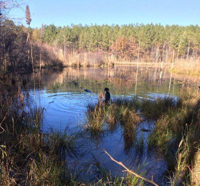 BRAD DYE: A boy and his 'Moose' share outdoors bond
