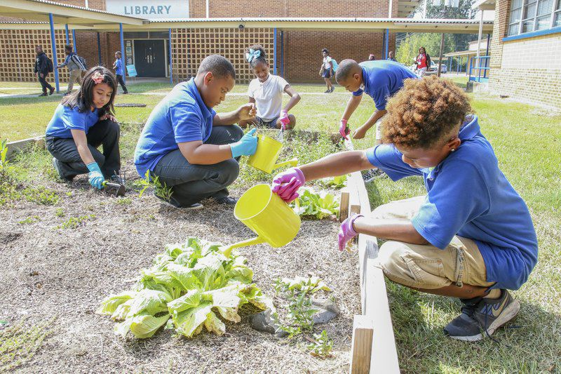 Knowledge grows through project-based learning at T.J. Harris in Meridian
