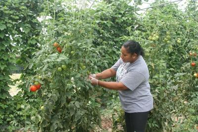 Choctaw Fresh Produce provides assistance during COVID-19