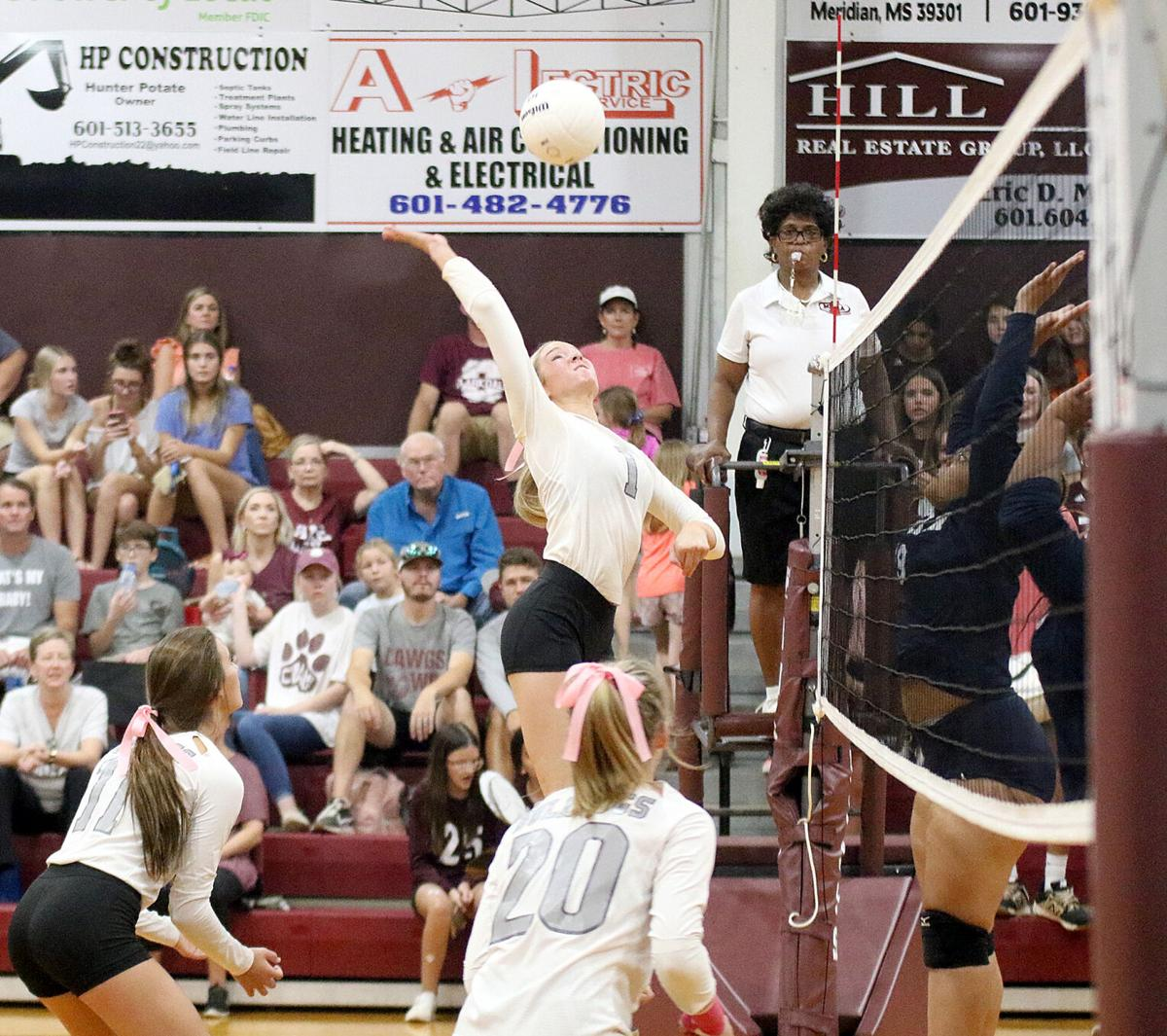 Anabelle Anderson Clarkdale volleyball