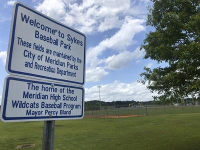 Meridian City Council approves agreement with youth baseball organization