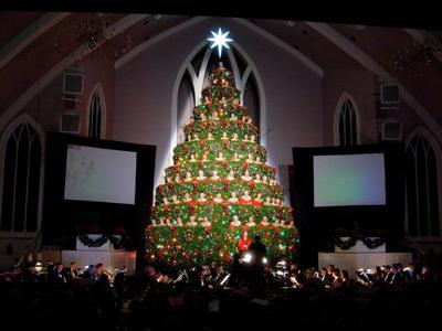 Singing Christmas Tree.Singing Christmas Tree An Evergreen Gift To Meridian Local