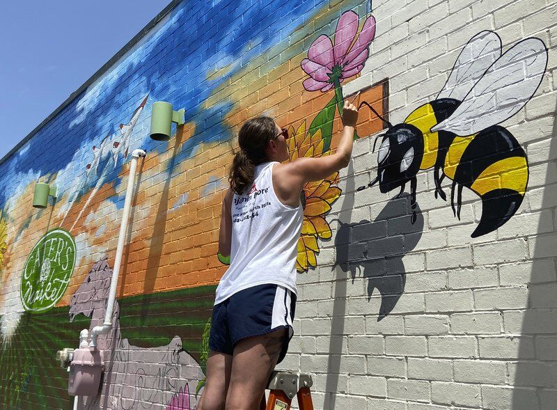 Like magic, massive mural appears at Cater's Market in Meridian