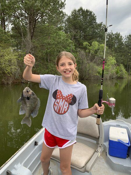 BRAD DYE: Red top clover and big bream