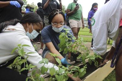 Meridian Freedom Project creates community garden at Frank Berry Courts