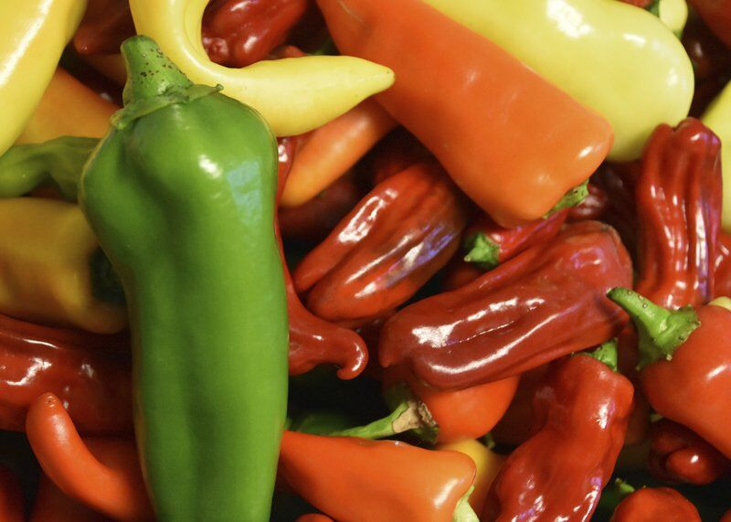 Peppers withstand heat and humidity