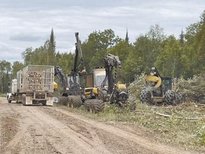 Northeastern Minnesota loggers work on establishing firebreaks at the Greenwood Fire.