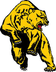 Bears fall short in 7AA title tilt