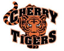 Tigers baseball faces Grizzlies again in Aurora