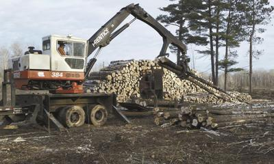 Timber industry for first time recognized as an agricultural commodity