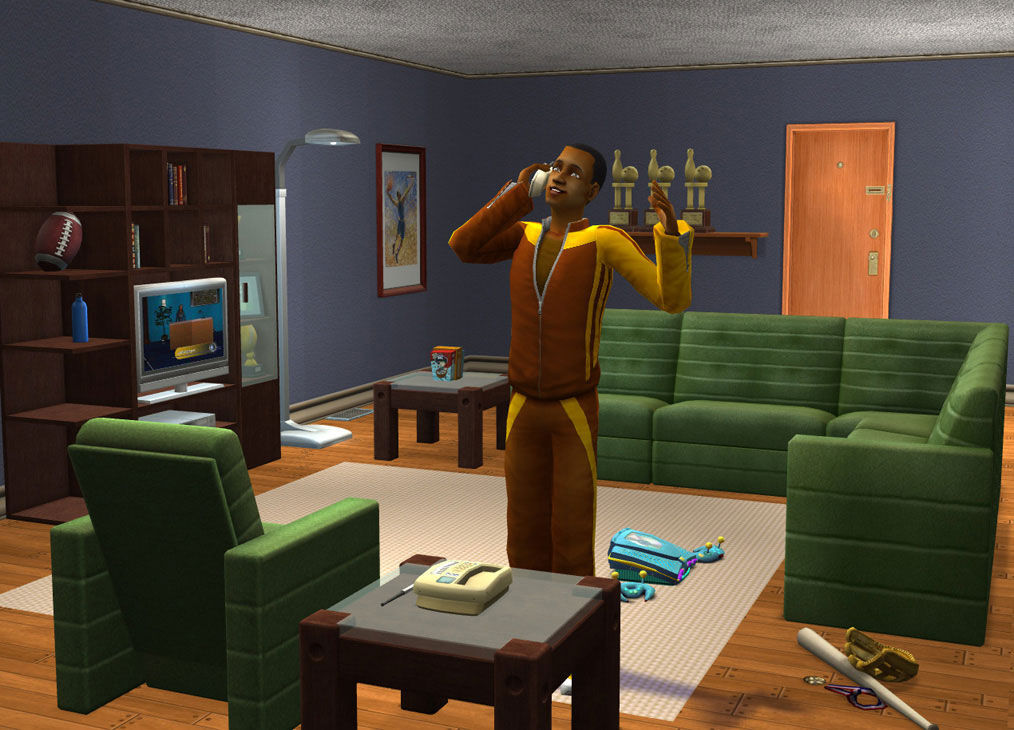 VIDEOGAMES-SIMS