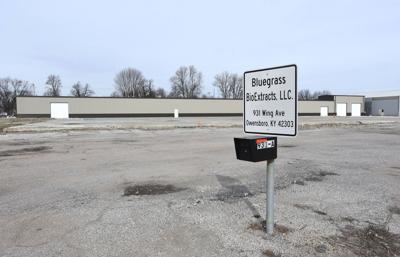 Bluegrass Buyers