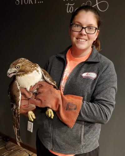 Shamar Wildlife Rehab and Sanctuary open in Hartford pic