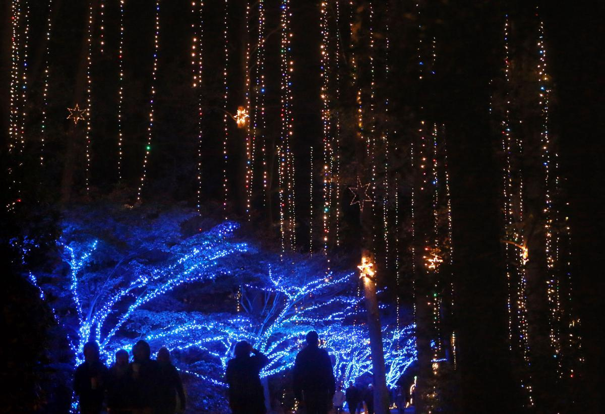 Check out the Garden of Lights at Norfolk Botanical Garden | On ...