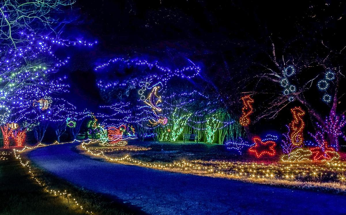 Dominion Garden of Lights celebrates 20th anniversary | On Liberty ...