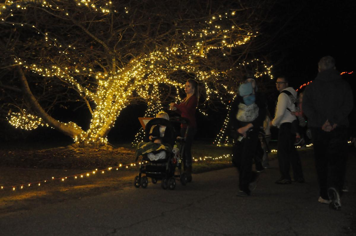 Check Out The Garden Of Lights At Norfolk Botanical Garden On Liberty
