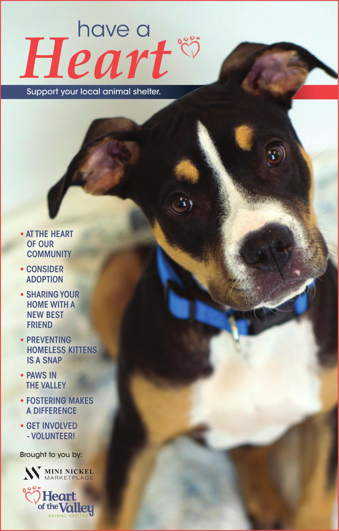 Have A Heart - Support Your Local Animal Shelter