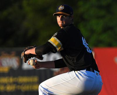 Chatham shines for Bees