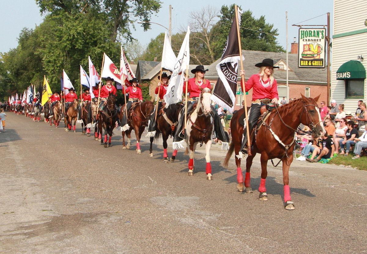 Long line of equines (copy)