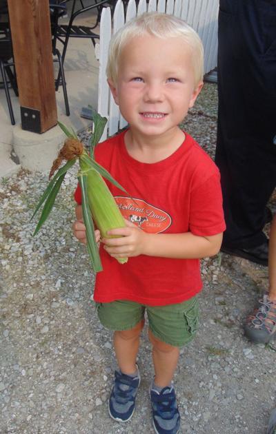 MONT Sweet corn