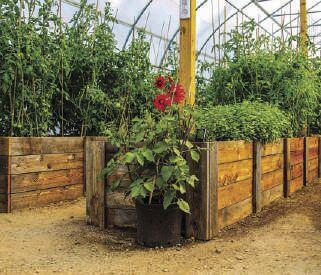 Montana Custom Greenhouses 01.jpg