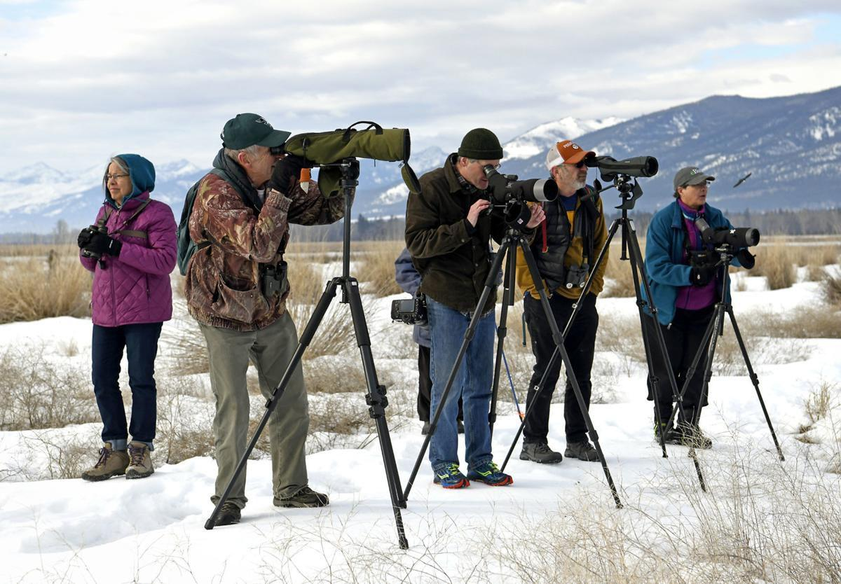 Looking for Signs of Spring at Lee Metcalf NWR