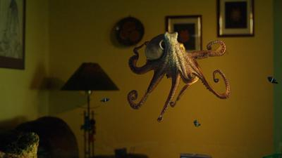 """""""Octopus: Making Contact"""""""