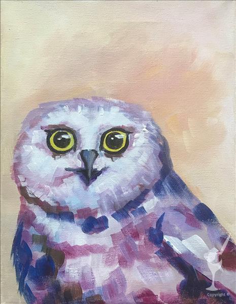 Bright-eyed Owl