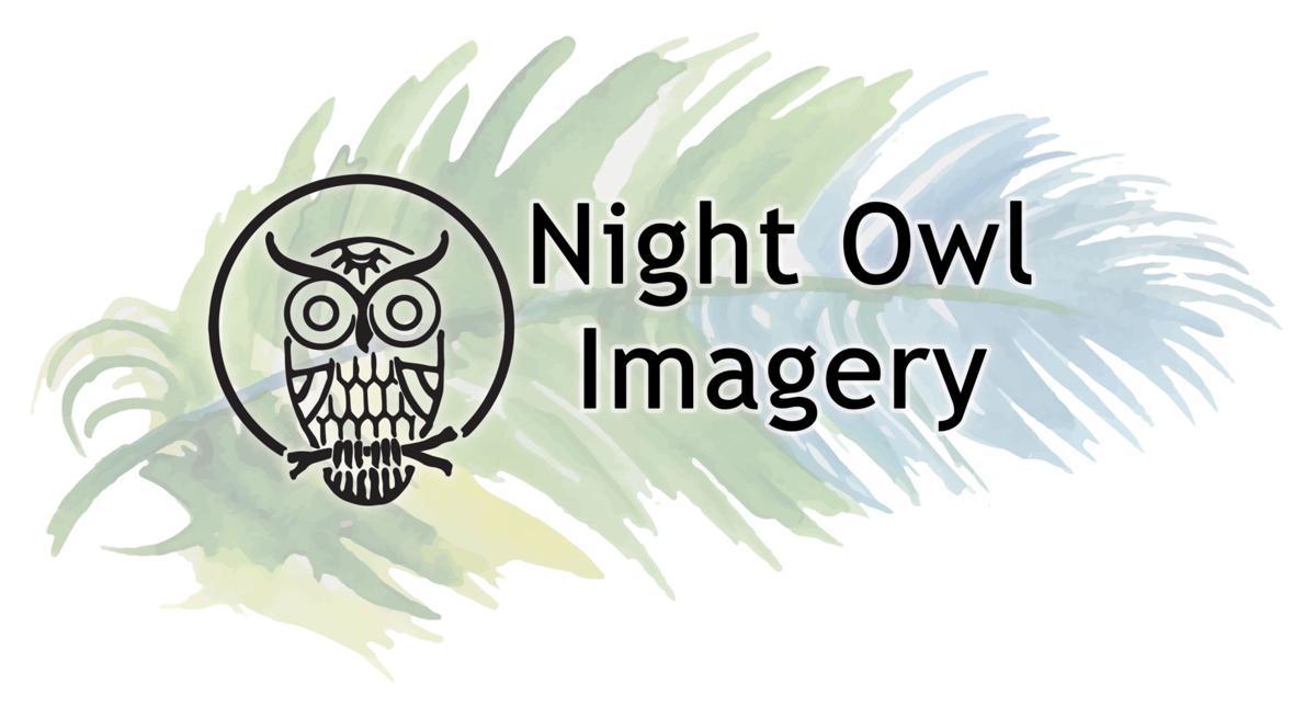 Night Owl LOGO USE THIS.jpg
