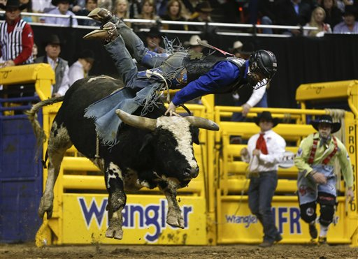 Branquinho Shepperson Take Bulldogging Buckles Rodeo