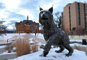 Montana State University to regents: Ask again for money to renovate historic Romney Hall