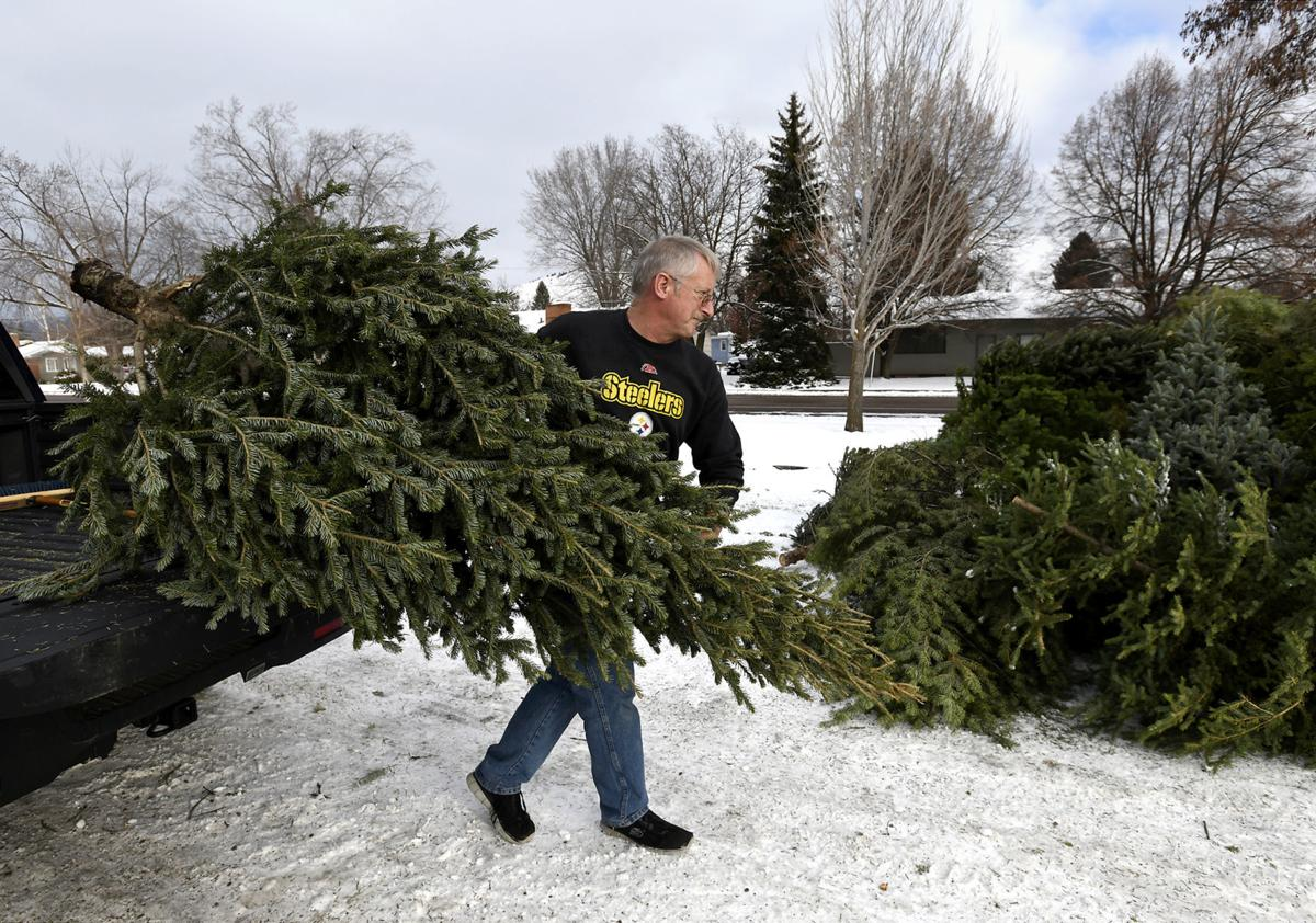 Christmas Tree Disposal.Missoula Parks And Rec Begins Christmas Tree Recycling And