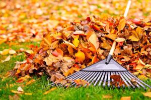 Historical Museum celebrates autumn