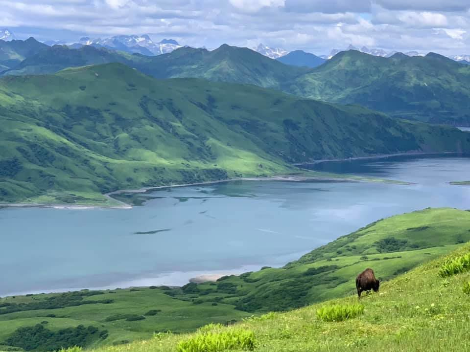 Sitkalidak Island