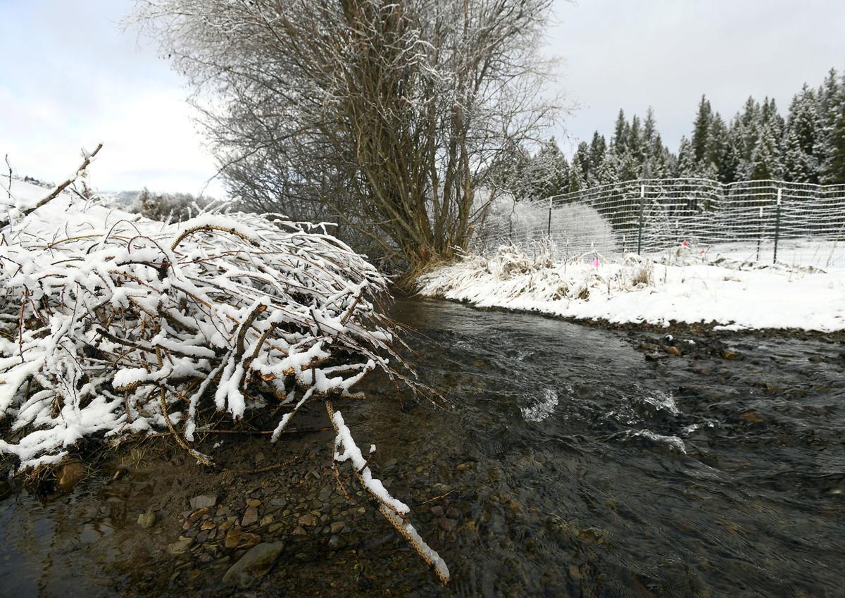 Miller Creek 2