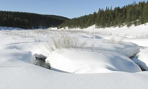 Midwinter snowpack still below normal in Montana, stronger east of Divide