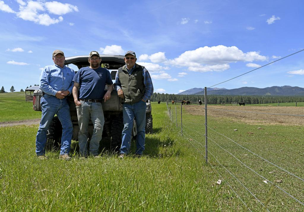 Ranchers work up tactics to deal with grizzlies | Local