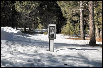 PHONE HOMES - Public pay phones are a vanishing breed in an age of constant cell contact