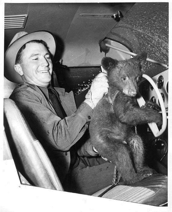 Smokey Bear 1950