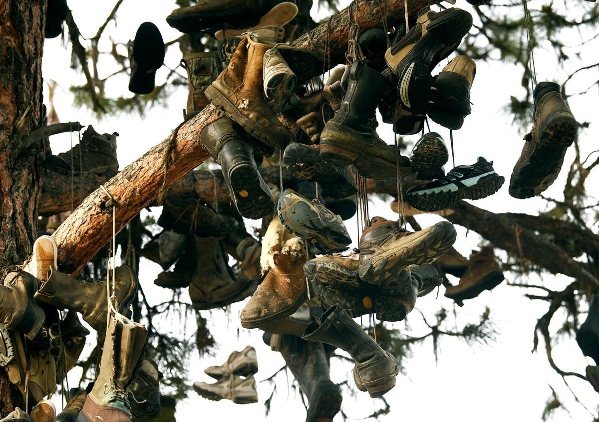 Boot Tree 2