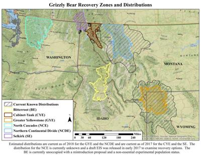 Grizzly Bear Recovery Areas