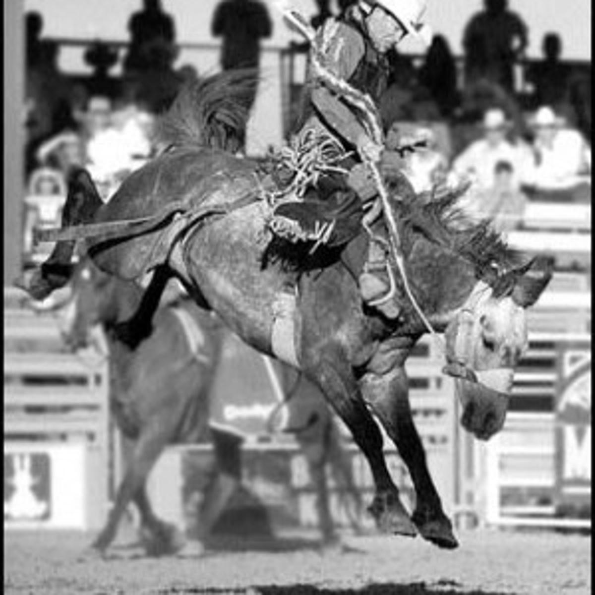 Mapston back in NFR after injury | Uncategorized