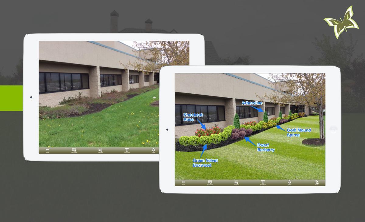 Gardening Virtual Landscaping